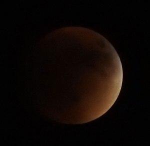 Laurel-Eclipse