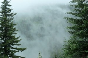 WA-Mt-Rainier-Paradise-clou
