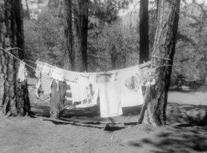 GS-Tautona-wash