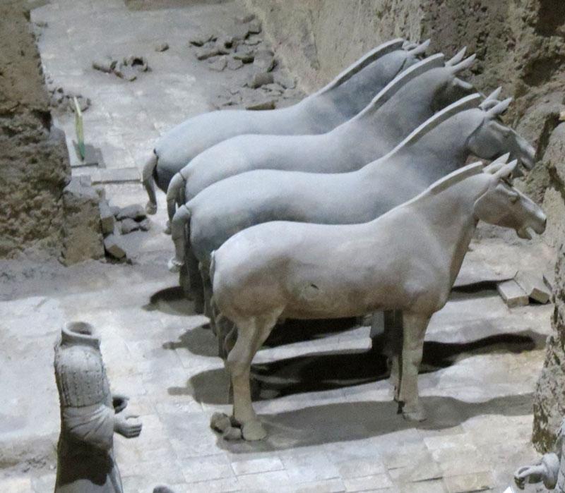 CH-Xian-TW-horses