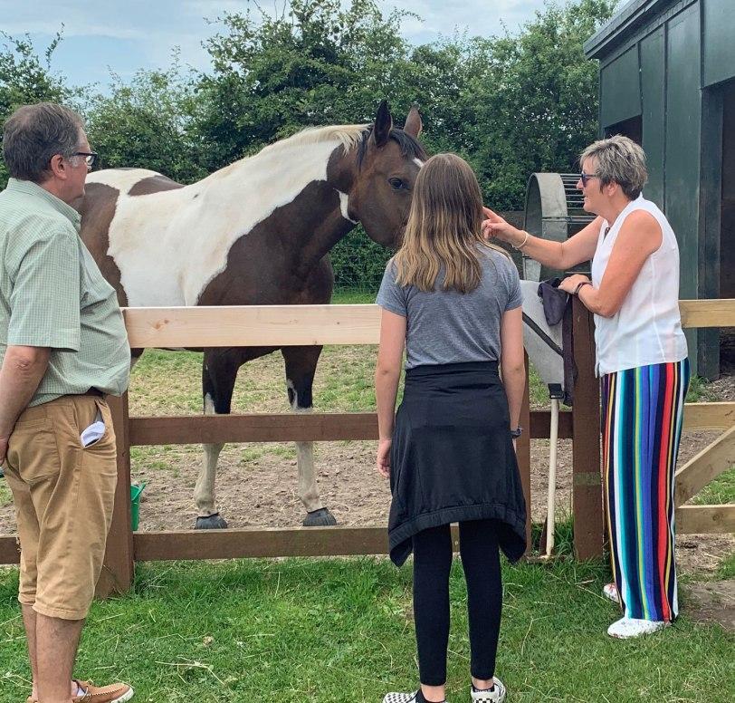 UK-Elgin-horse-farm-7-26-19